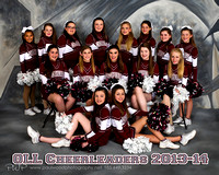 Our Lady of Lourdes Cheer 2013-14